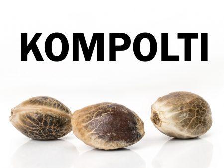 Kompolti CBD hemp seeds